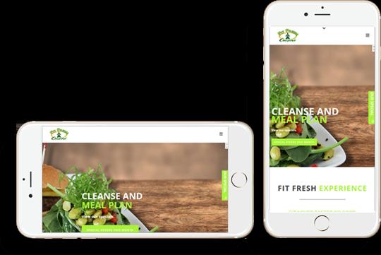 mobile friendly website samples